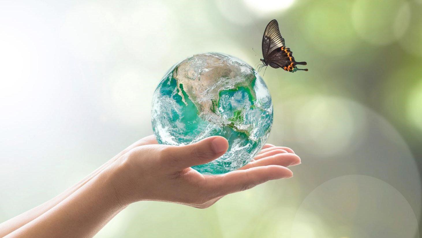 きれいな地球と蝶々